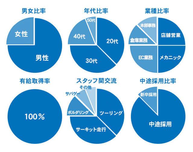 スタッフ構成グラフ
