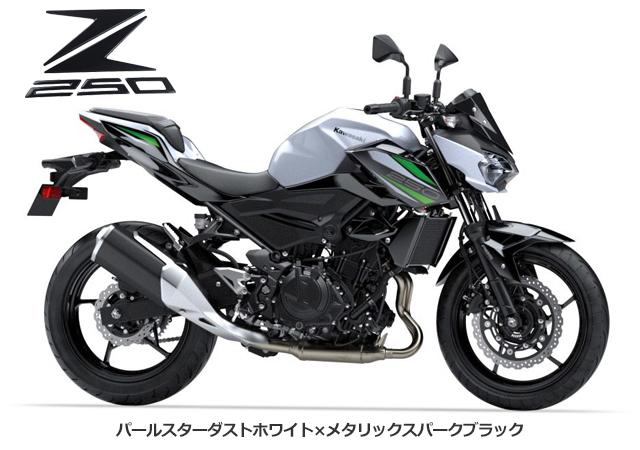 2019 KAWASAKI Z250